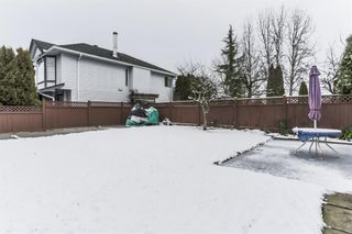 Photo 19: 11716 231B Street in Maple Ridge: East Central House for sale : MLS®# R2229621