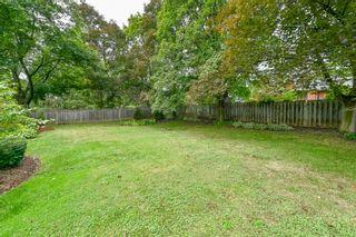 Photo 50: 39 Maple Avenue in Flamborough: House for sale : MLS®# H4063672