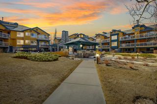 Photo 31: 102 25 Richard Place SW in Calgary: Lincoln Park Apartment for sale : MLS®# A1106897