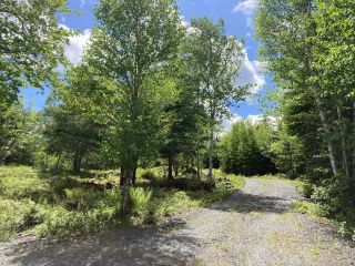 Photo 24: Lot 29 Anderson Drive in Sherbrooke: 303-Guysborough County Vacant Land for sale (Highland Region)  : MLS®# 202115631