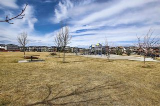 Photo 20: 203 Copperstone Park SE in Calgary: Copperfield Row/Townhouse for sale : MLS®# A1100614