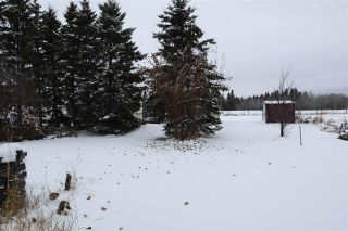 Photo 33: 4702 53 Avenue: Thorsby House for sale : MLS®# E4220799
