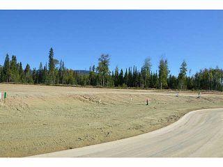 """Photo 20: LOT 15 BELL Place in Mackenzie: Mackenzie -Town Land for sale in """"BELL PLACE"""" (Mackenzie (Zone 69))  : MLS®# N227308"""