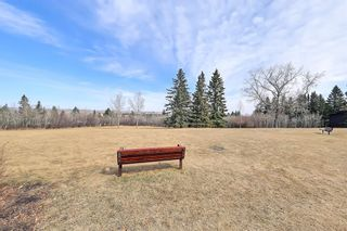 Photo 46: 8 Wildwood Drive SW in Calgary: Wildwood Detached for sale : MLS®# A1070581