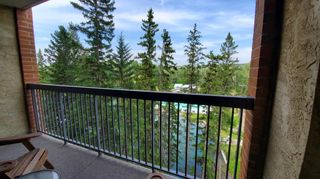 Photo 22: 311 8604 48 Avenue NW in Calgary: Bowness Apartment for sale : MLS®# A1113873