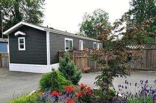 """Photo 1: 146 10221 WILSON Street in Mission: Mission BC Manufactured Home for sale in """"TRIPLE CREEK ESTATES"""" : MLS®# R2599300"""