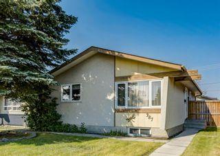 Photo 30: 387 Maitland Crescent NE in Calgary: Marlborough Park Detached for sale : MLS®# A1126572