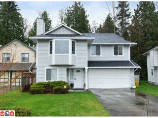 Photo 1: 21489 90TH Avenue in Langley: Walnut Grove House for sale : MLS®# F1108467