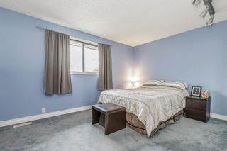Photo 20: 28 EDGEFORD Road NW in Calgary: Edgemont Detached for sale : MLS®# A1023465