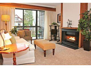 Photo 4: # 309 265 E 15TH AV in Vancouver: Mount Pleasant VE Condo for sale (Vancouver East)  : MLS®# V1012093