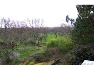 Photo 9:  in VICTORIA: SE Cedar Hill House for sale (Saanich East)  : MLS®# 358045