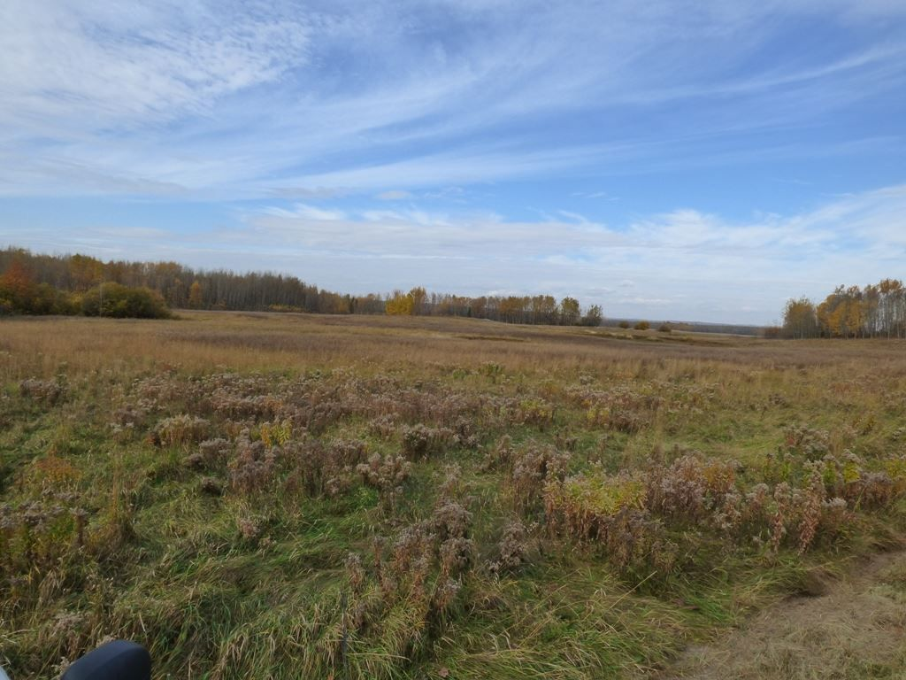 Photo 29: Photos: N1/2 SE19-57-1-W5: Rural Barrhead County Rural Land/Vacant Lot for sale : MLS®# E4217154