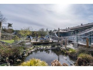 Photo 38: 15222 HARRIS Road in Pitt Meadows: West Meadows House for sale : MLS®# R2561730