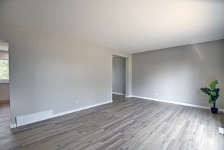 Photo 15: 7516 131A Avenue in Edmonton: Zone 02 House for sale : MLS®# E4254538