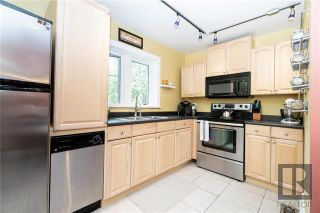 Photo 3: 2 504 Dominion Street in Winnipeg: Wolseley Condominium for sale (5B)  : MLS®# 1827372