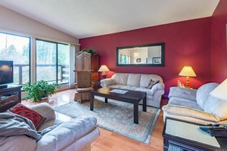 Photo 3: 4365 Munster Rd in : CV Courtenay West House for sale (Comox Valley)  : MLS®# 872010