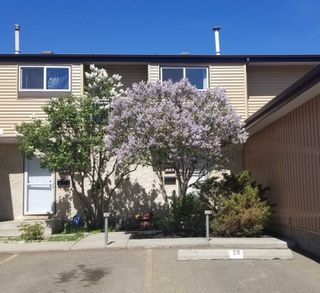 Photo 1: 623 KNOTTWOOD Road W in Edmonton: Zone 29 Townhouse for sale : MLS®# E4247650