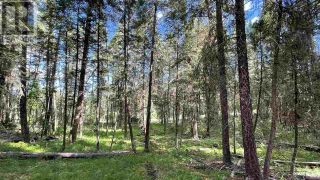 Photo 8: LOT 40 KALLUM DRIVE in 108 Mile Ranch: Vacant Land for sale : MLS®# R2591288