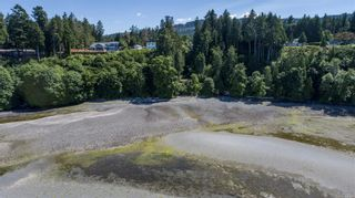Photo 35: 7484 Lantzville Rd in : Na Lower Lantzville House for sale (Nanaimo)  : MLS®# 878100