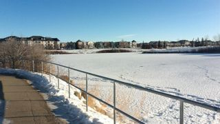 Photo 47: 306 Inverness Park SE in Calgary: McKenzie Towne Detached for sale : MLS®# A1069618