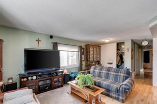 Photo 3: 10 Abalone Crescent NE in Calgary: Abbeydale Detached for sale : MLS®# A1072255