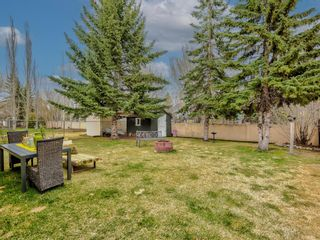 Photo 47: 54 Mount Robson Close SE in Calgary: McKenzie Lake Detached for sale : MLS®# A1096775
