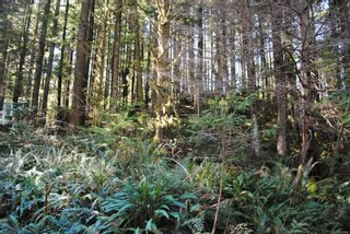 Photo 9: Lot 42 Sonora Island in : Isl Small Islands (Campbell River Area) Land for sale (Islands)  : MLS®# 885460