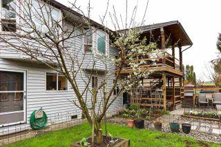 Photo 33: 20186 BRUCE Avenue in Maple Ridge: Southwest Maple Ridge House for sale : MLS®# R2564425
