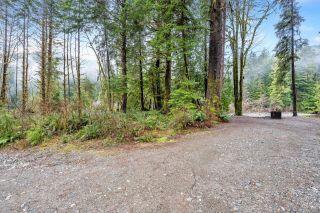 Photo 17: NE1/4SEC15 Gordon River Rd in Port Renfrew: Sk Port Renfrew Land for sale (Sooke)  : MLS®# 864408