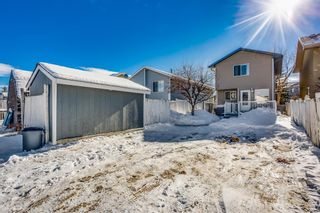 Photo 16: 100 Martinwood Road NE in Calgary: Martindale Detached for sale : MLS®# A1071596