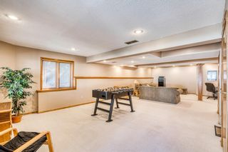 Photo 28: 64 Hawkford Crescent NW in Calgary: Hawkwood Detached for sale : MLS®# A1144799