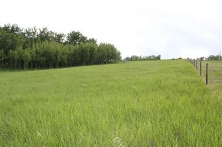 Photo 15: 198010 96th ST W: Rural Foothills County Land for sale : MLS®# C4253512