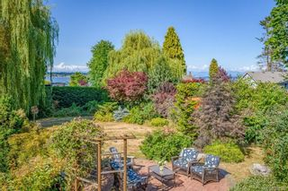 Photo 65: 3938 Island Hwy in : CV Courtenay South House for sale (Comox Valley)  : MLS®# 881986