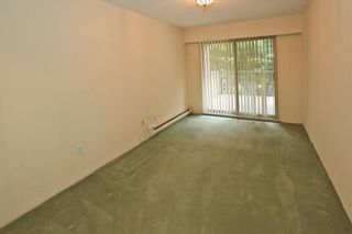 """Photo 8: 204 1260 W 10TH Avenue in Vancouver: Fairview VW Condo for sale in """"LABELLE COURT"""" (Vancouver West)  : MLS®# R2615992"""