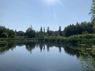 Photo 49: 12312 20 Avenue in Edmonton: Zone 55 House for sale : MLS®# E4254119