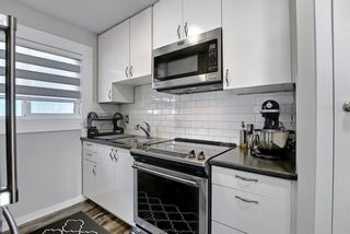 Photo 21: 1027 Penrith Crescent SE in Calgary: Penbrooke Meadows Detached for sale : MLS®# A1104837