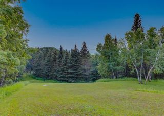 Photo 44: 258040 1240 Drive W: Rural Foothills County Detached for sale : MLS®# A1133554