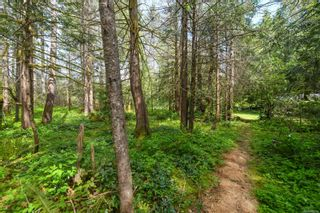 Photo 41: 3534 Royston Rd in : CV Courtenay South House for sale (Comox Valley)  : MLS®# 875936