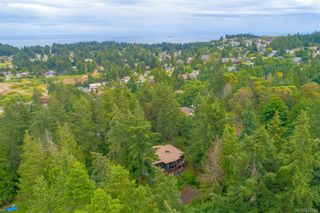 Photo 41: 3322 Fulton Rd in Colwood: Co Triangle House for sale : MLS®# 842394
