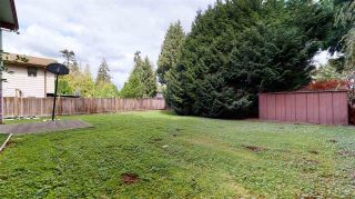 Photo 22: 4982 203 Street in Langley: Langley City House for sale : MLS®# R2495872