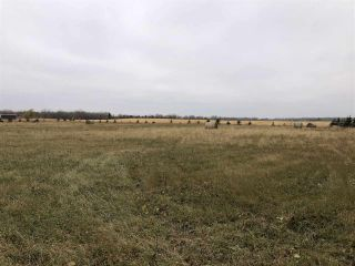 Photo 10: Twp Rd 583 Rge Rd 271: Rural Westlock County Rural Land/Vacant Lot for sale : MLS®# E4218422