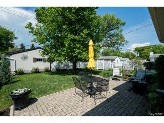 Photo 16: 313 Carpathia Road in WINNIPEG: River Heights / Tuxedo / Linden Woods Residential for sale (South Winnipeg)  : MLS®# 1515096