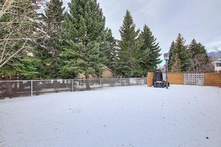 Photo 46: 32 Varcrest Place NW in Calgary: Varsity Detached for sale : MLS®# A1060707