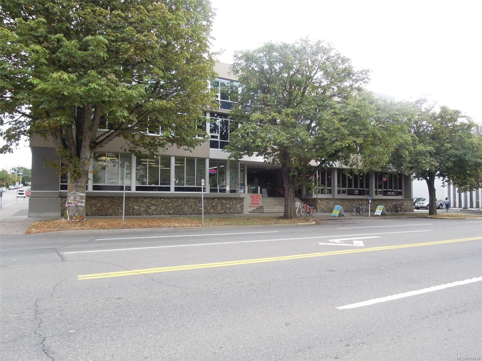 Main Photo: 227 1175 Cook St in Victoria: Vi Downtown Office for lease : MLS®# 859814