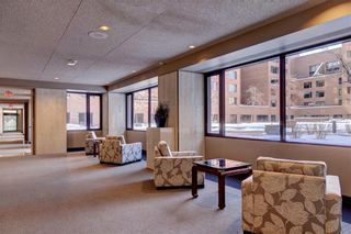 Photo 45: 500J 500 EAU CLAIRE Avenue SW in Calgary: Eau Claire Apartment for sale : MLS®# C4281669