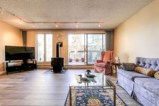 Photo 6: 301 1229 Cameron Avenue SW in Calgary: Lower Mount Royal Apartment for sale : MLS®# A1095141