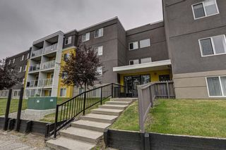 Main Photo: 302 4455A Greenview Drive NE in Calgary: Greenview Apartment for sale : MLS®# A1131149