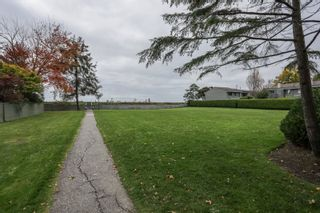 """Photo 29: 104 3031 WILLIAMS Road in Richmond: Seafair Townhouse for sale in """"EDGEWATER PARK"""" : MLS®# R2513589"""