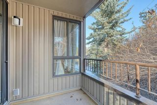 Photo 24: 201 2425 90 Avenue SW in Calgary: Palliser Apartment for sale : MLS®# A1052664