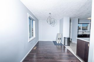 Photo 9: 280 Rundlefield Road NE in Calgary: Rundle Detached for sale : MLS®# A1142021
